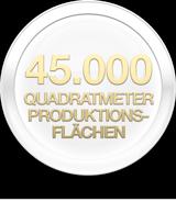 45000 Quadratmeter Produktionsflächen